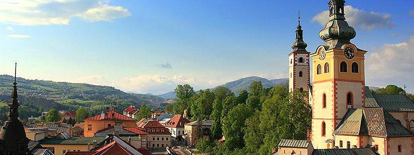 Годовой курс словацкого языка