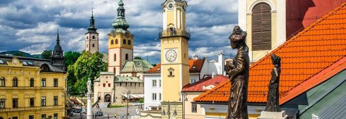 Поступление на медицинский факультет в Кошице и Братиславе, Словакия